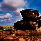 Kakadu  - Billabong Floodplains and Rocks by Jaxybelle