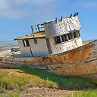 Beached - Point Reyes Tug by Michael Rubin