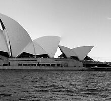 The Sydney Opera House in Black and White by RichardsPC
