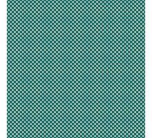 Cute Aqua Polka Dot Photographic Print