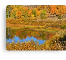 Snake River Reflections Canvas Print