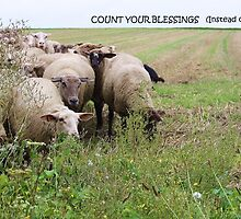 Count Your Blessings... by artsandherbs