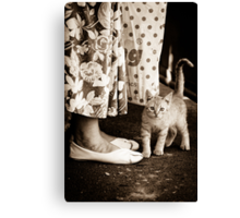 OnePhotoPerDay Series: 256 by L. Canvas Print