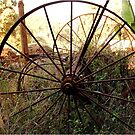 #SERIES WEGRAAKBOSCH -OLD FORGOTTON FARM IMPLEMENTS - Limpopo Province, South Africa by Magriet Meintjes