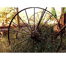 #SERIES WEGRAAKBOSCH -OLD FORGOTTON FARM IMPLEMENTS - Limpopo Province, South Africa Photographic Print