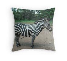 Racing Stripes Throw Pillow