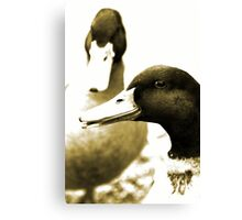 Fowl Mood Canvas Print
