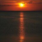 Black Sunset by leslie wood