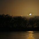 Moon rise over Mangroves by Arthur Koole