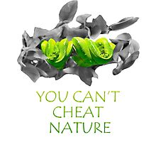 You can't cheat nature - snake Photographic Print