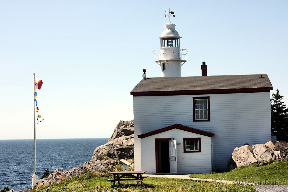 Lobster Cove Head Lighthouse Rocky Harbor by Leslie van de Ligt
