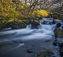 Nant Ffrancon Pass River by Ian Mitchell