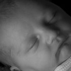 Dylan at One Day Old in B&W by Timothy Meissen