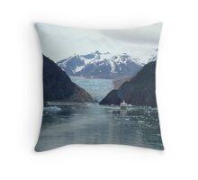 Glacier Meltdown Throw Pillow
