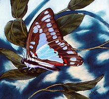 Blue Triangle -butterfly by maria paterson