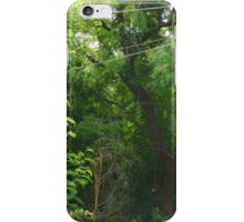Thick Forest iPhone Case/Skin