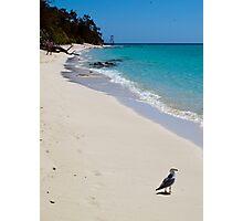 Beach Scene - Heron Island - Australia Photographic Print