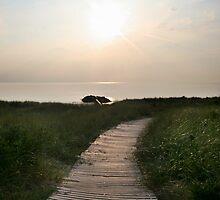 Pacifying Path by JLPPhotos