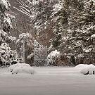 Winter Gate in the Garden by Monica M. Scanlan