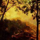 Painted Mountain-Venezuela ©  by Dawn M. Becker