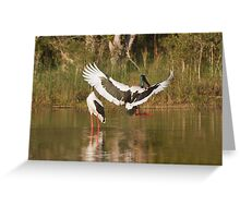 Clear The Pond Run Greeting Card