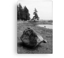 Lonely Living Canvas Print