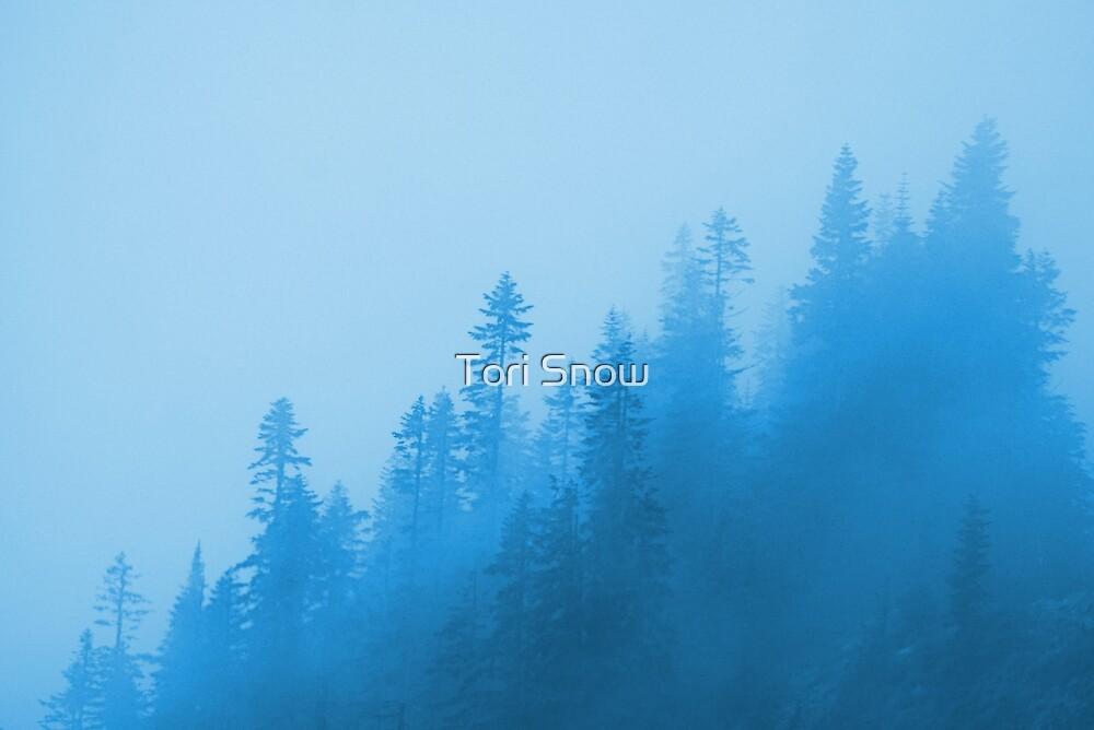 Misty Trees by Tori Snow