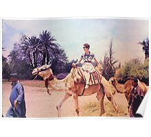 Vintage Woman on a Camel in Africa Poster