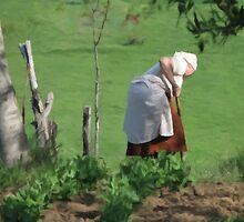 Tilling the Land in Romania by Dennis Melling