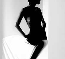 shadow by Darta Veismane