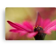 Pink and Dreamy Metal Print