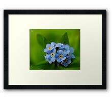 Soft and Blue Framed Print