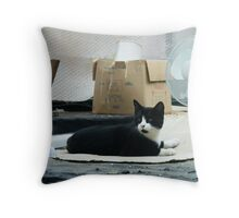 The Cat And The Boxes Throw Pillow