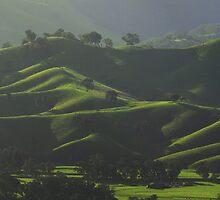 Thorntons Velvet hills by Donovan wilson