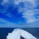 Blue Horizon by Samantha Higgs