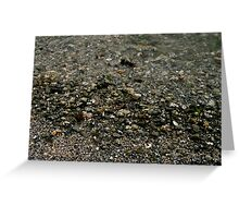 Wet Pebbles  Greeting Card