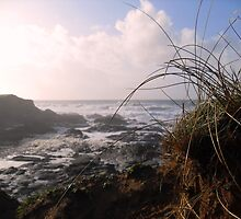 To the Sea by Melanie G