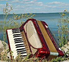 The Red Accordion by Diane  Kramer