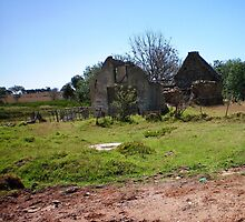Remains of a house in the Agulhas National Park by Cheryl Otto