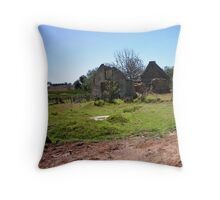 Remains of a house in the Agulhas National Park Throw Pillow