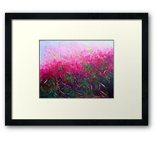 Bursting with colour Framed Print