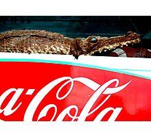 Gator! Photographic Print