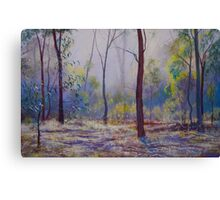 'Moody Bush Blues' Canvas Print