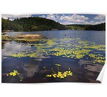 Bear Lake - Ontario, Canada. Poster
