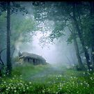 The Cottage in the Woods by Celtic Mystery
