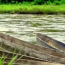 Canoes amongst Crocodiles by yaana
