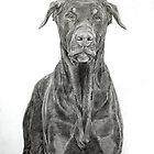 Dobermann ( brown) by Istvan Natart