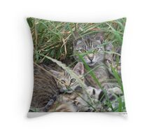 Mother & Kittens Throw Pillow