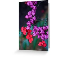 Floral Remedy Greeting Card