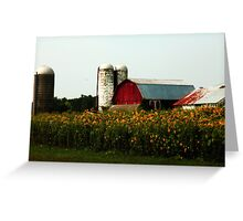 Field of sunshine Greeting Card
